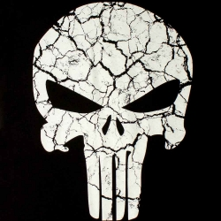 Футболка Punisher Lumin